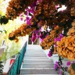 kumsal-camii-adalar-merdiven-800x1200