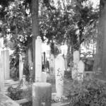 seyh-devati-camii-bahce-mezar-1200x800