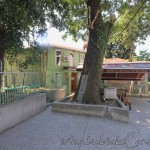 fevziye-kucuk-efendi-camii-fatih-avlu-foto-1200x800