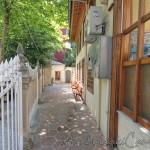 hoca-uveys-camii-fatih-avlusu-1200x800