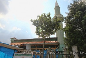 İsmet Efendi Tekke Camii , Fatih