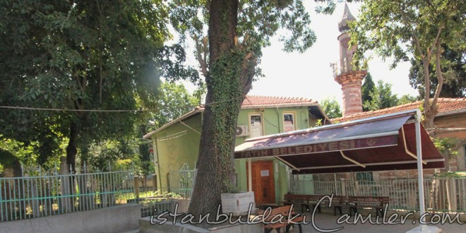 Fevziye Küçük Efendi Camii - Fevziye Kucuk Efendi Mosque